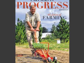 PROGRESS 2020 Edition