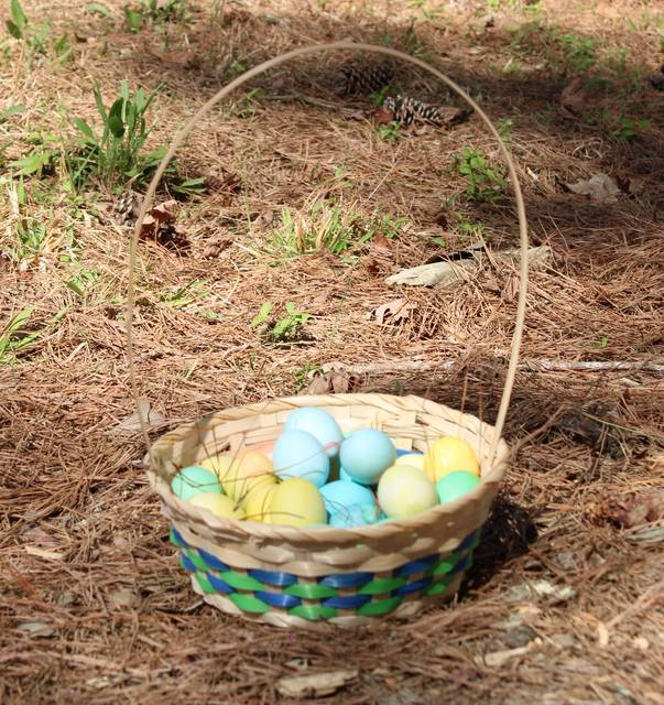 <p>Gavin Stone   Daily Journal</p>                                 <p>An Easter basket left unattended.</p>