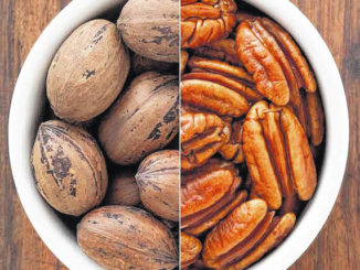 National Pecan Month: Celebrating the history and health benefits