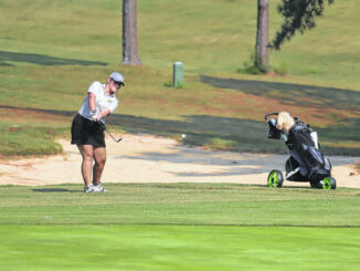 Jamie Sears hits a pitch shot out of the rough on the 18th green on the Grey Course at Foxfire Monday.                                  Neel Madhavan | Daily Journal